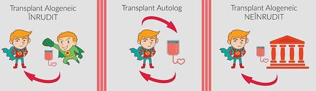 transplant_autolog