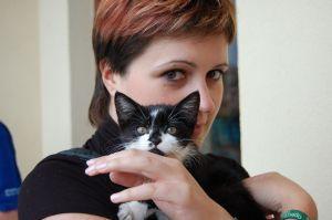 Pisica, un pericol pentru sarcina ta