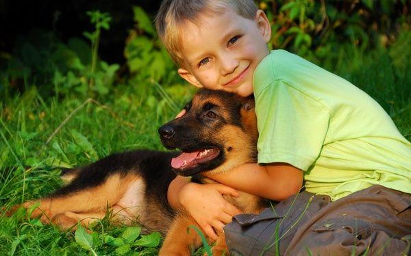 Invata copilul sa respecte animalele