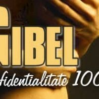Cabinetul Gibel