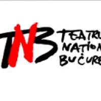 Teatrul National Bucuresti Ion Luca Caragiale