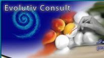 Evolutiv Consult