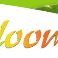Blooms Beauty Salon