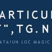 Gradinita Micul Print Targu Neamt
