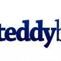 Gradinita Teddy Bear