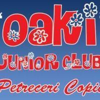 Oaki Club - petreceri copii