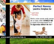 Perfect Nanny, bona perfecta pentru copilul tau