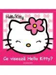 Hello Kitty - Ce viseaza Hello Kitty?