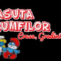 Casuta Strumfilor Militari - scoala de vara / gradinita / after school