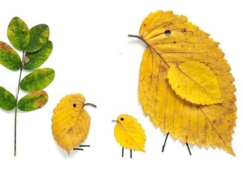 7 crafturi din frunze pentru copii